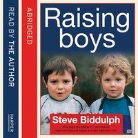 Steve Biddulph's Raising Boys - Steve Biddulph
