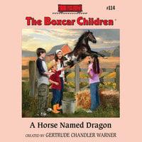 A Horse Named Dragon - Gertrude Chandler Warner