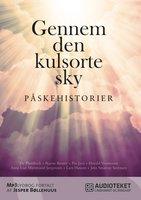 Gennem den kulsorte sky - Påskehistorier - Anne Lise Marstrand-Jørgensen, Jens Smærup Sørensen, Dy Plambeck, Bjarne Reuter, Lars Husum, Harald Voetmann, Pia Juul