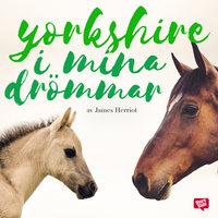 Yorkshire i mina drömmar - James Herriot