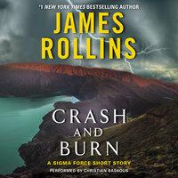 Crash and Burn - James Rollins