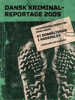 Et dobbeltdrab i Haderslev - Diverse forfattere