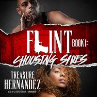 Flint, Book 1 - Treasure Hernandez