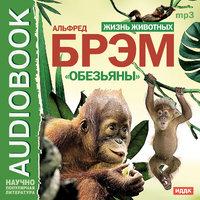 Жизнь животных. Обезьяны - Альфред Эдмунд Брем