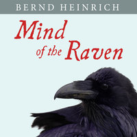 Mind of the Raven: Investigations and Adventures with Wolf-Birds - Bernd Heinrich