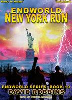 New York Run - David Robbins