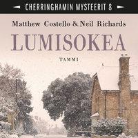 Lumisokea - Matthew Costello, Neil Richards