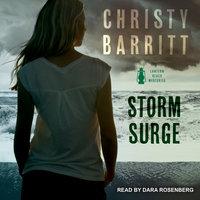 Storm Surge - Christy Barritt