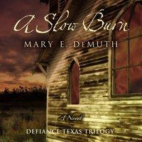 A Slow Burn - Mary E DeMuth