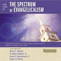 Four Views on the Spectrum of Evangelicalism - Roger E. Olson, R. Albert Mohler, Jr., Kevin Bauder, John G. Stackhouse, Jr.