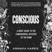Conscious - Annaka Harris