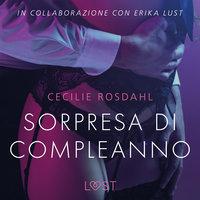 Sorpresa di compleanno - Breve racconto erotico - Cecilie Rosdahl
