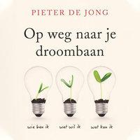 Op weg naar je droombaan - Pieter de Jong
