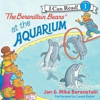 The Berenstain Bears at the Aquarium - Jan Berenstain, Mike Berenstain