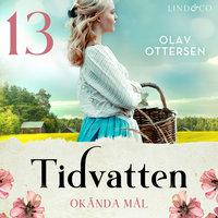 Okända mål: En släkthistoria - Olav Ottersen