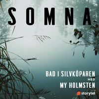 Bad i Silvköparen - Helena Kubicek Boye