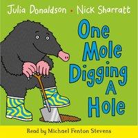 One Mole Digging A Hole - Julia Donaldson
