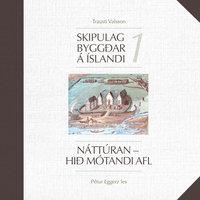 Skipulag byggðar á Íslandi 1: Náttúran – Hið mótandi afl - Trausti Valsson