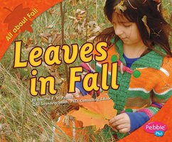 Leaves in Fall - Martha Rustad
