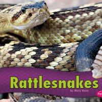 Rattlesnakes - Mary R. Dunn
