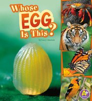 Whose Egg Is This? - Lisa Amstutz