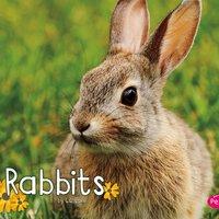 Rabbits - G.G. Lake