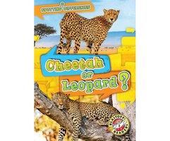 Cheetah or Leopard? - Kirsten Chang