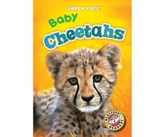 Baby Cheetahs - Christina Leaf