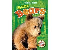Baby Bears - Kari Schuetz