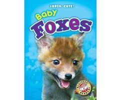 Baby Foxes - Megan Borgert-Spaniol