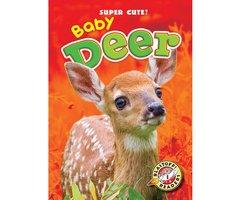 Baby Deer - Bethany Olson