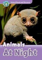 Animals at Night - Rachel Bladon