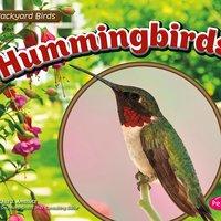 Hummingbirds - Lisa Amstutz