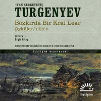 Bozkırda Bir Kral Lear - Öyküler 3. Cilt - Ivan Sergeyeviç Turgenyev