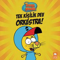 Tek Kişilik Dev Orkestra - Kral Şakir - Grafi 2000