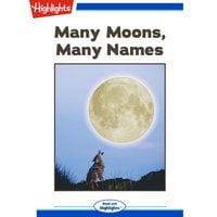 Many Moons, Many Names - Michelle Schaub