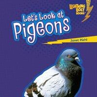 Let's Look at Pigeons - Janet Piehl