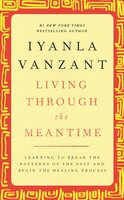 Living Through the Meantime: Learning to Break the Patterns of the Past and Beg - Iyanla Vanzant