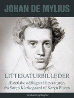 Litteraturbilleder: Æstetiske udflugter i litteraturen fra Søren Kierkegaard til Karen Blixen - Johan de Mylius
