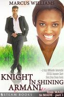 Knight in Shining Armani - A Sexy Billionaire Interracial BWWM Romance Short Story from Steam Books - Marcus Williams, Steam Books