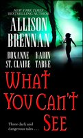 What You Can't See - Roxanne St. Claire, Karin Tabke, Allison Brennan