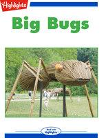 Big Bugs - Jennifer Mattox