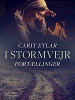 I stormvejr: Fortællinger - Carit Etlar