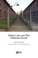 Auschwitz - Robert-Jan van Pelt, Debórah Dwork