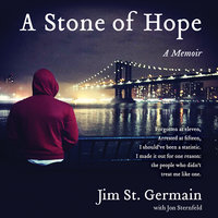 A Stone of Hope - Jim St. Germain,Jon Sternfeld