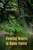 Flowing Waters in Rainy Forest - Ambient Nature Sounds - Greg Cetus