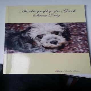 autobiography of street dog During their impressive run, the band has released 12 studio albums (including street dogs) to commemorate widespread panic's 25th anniversary in 2011.