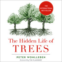 The Hidden Life of Trees - What They Feel, How They Communicate - Discoveries from a Secret World - Peter Wohlleben