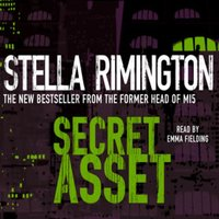 Secret Asset - Stella Remington