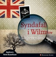 Syndafall i Wilmslow - David Lagercrantz